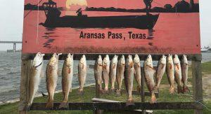 Sport fishing charters Port Aransas Texas